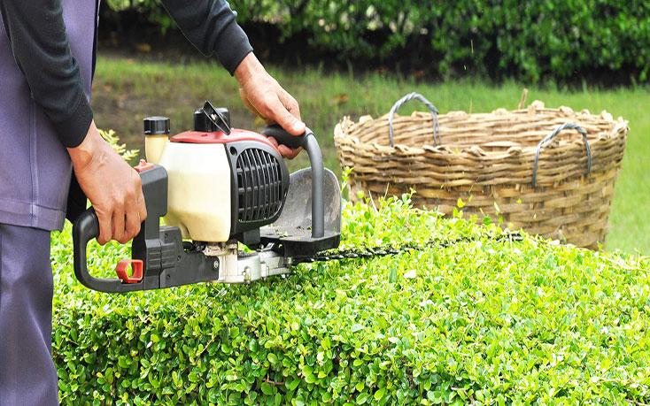 Избор на храсторези в онлайн магазин за градинска техника